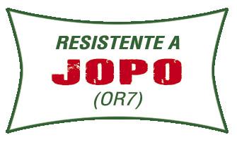 LOGO_jopo