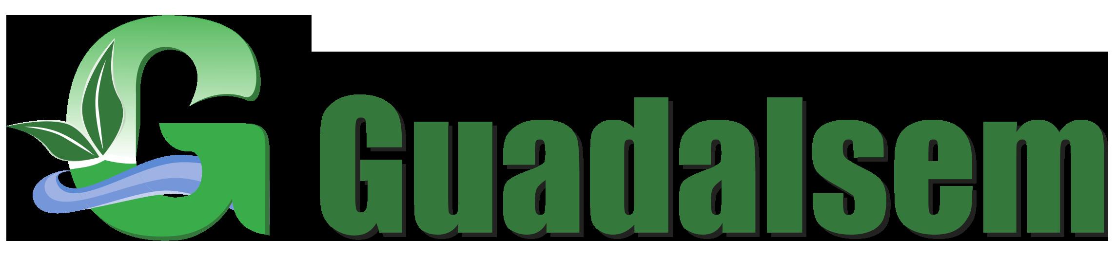 Guadalsem